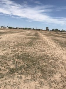 Land for Sale Buckeye AZ
